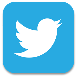 Twitter is the most widely used social media platform. Our team is managing your social media account to rank website.